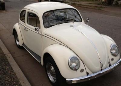 Clean Bug 1